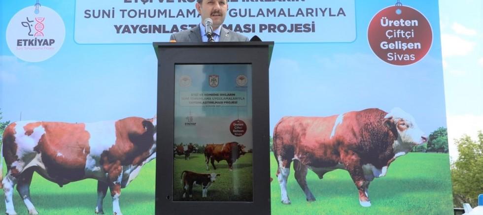 Hayvanlarda Verimin Arttırılması Projesi Hayata Geçti